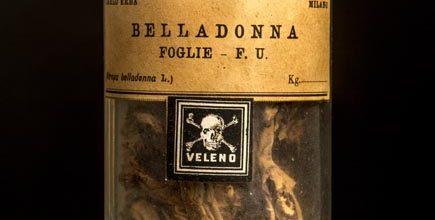 Goodmorning Brescia (154) – Il veleno più delizioso? Senz'altro la Belladonna.